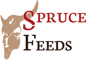 Spruce Capital Feeds, Prince George, BC