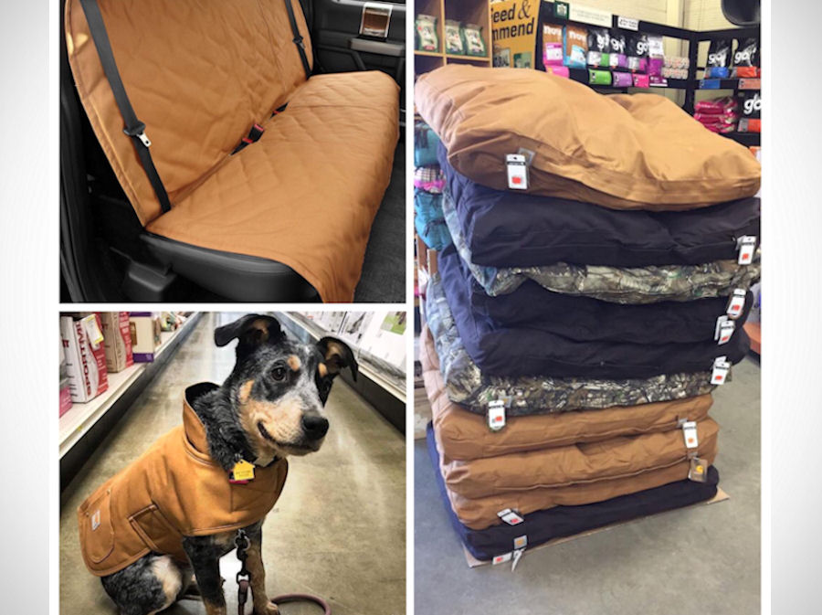 Carhartt pet products