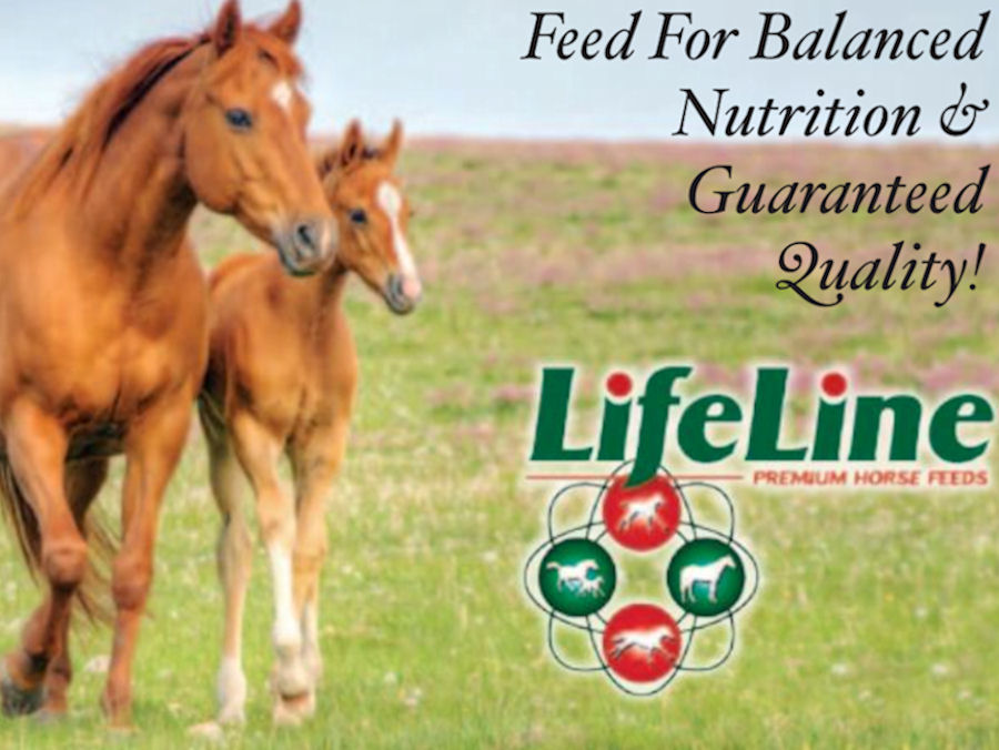 Lifeline Animal Feeds